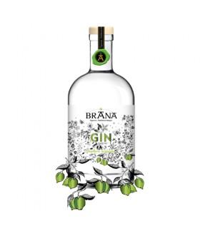 BRANA- Gin au Citron vert